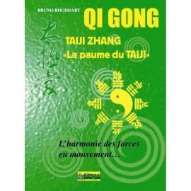 TAIJIZHANG 'la paume du TAIJI'